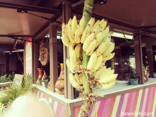 アップルバナナ販売