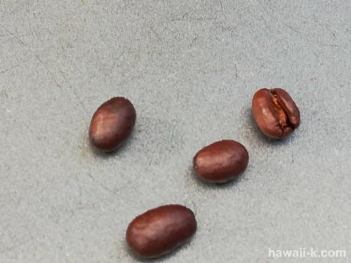 ピーベリーの豆